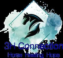 3H Connection logo